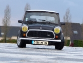 austin-mini-check-mate-02.jpg