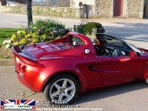 lotus-elise-111s-s1-inferno-red-20.jpg