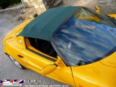 lotus-elise-s1-norfolk-mustar-yellow-08.jpg