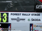 goodwood-festival-of-speed-2012-rally-03.jpg