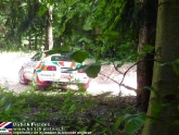 goodwood-festival-of-speed-2012-rally-20.jpg