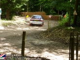goodwood-festival-of-speed-2012-rally-21.jpg