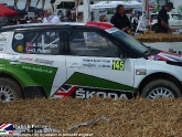 goodwood-festival-of-speed-2012-rally-28.jpg