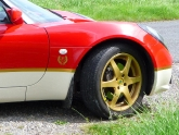 lotus-elise-s2-type-49-gold-leaf-03.jpg