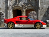 lotus-elise-s2-type-49-gold-leaf-26.jpg